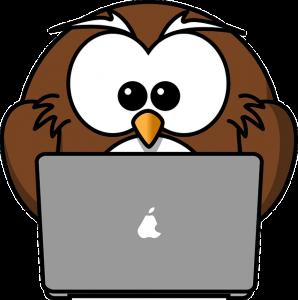 owllaptop